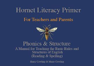 The hornet cover